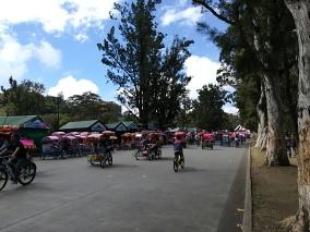 Calle para solo bicis los domingos en el Parque Burnham
