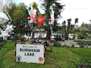 Lago Burnham