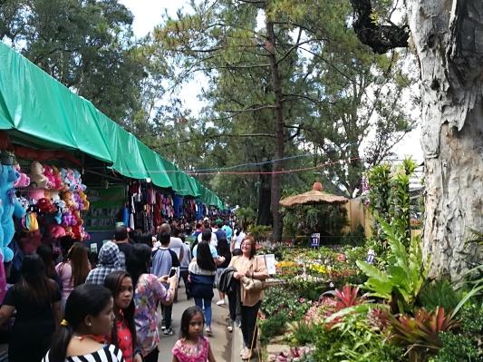 En el otro lado del mercado encontramos diversos stand elaborados en el último mes. que son de concurso, relacionándolos con la festividad de las Flores.