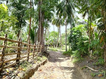 Camino de inicio para el monte Lanaya