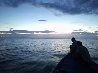Salida a ver tiburones zorro