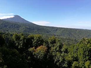 Vista del Monte Batukaru