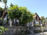 Krisna House