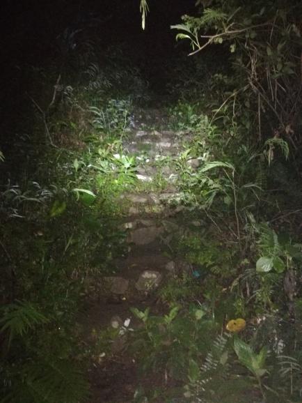 Escaleras en la noche