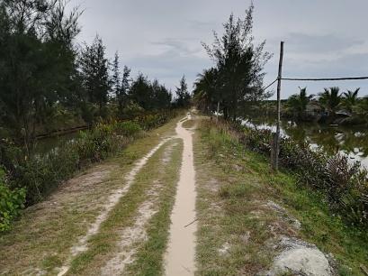Camino entre canales y criaderos
