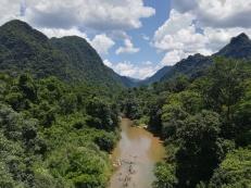 Vista desde uno de los puentes camino al P.Botánico