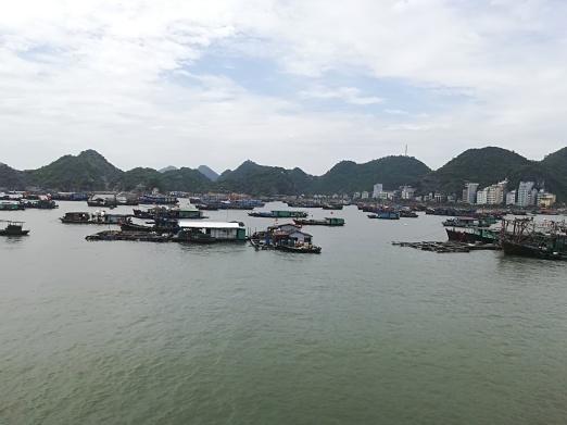 Vista de Cat Ba, la bahia y la los barcos de pesca