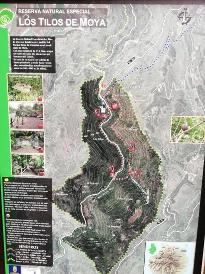 Mapa del lugar