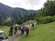 Cargando los caballos