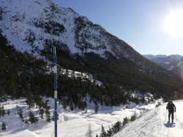 Pista de ski alpino